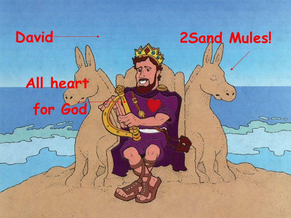 David 2Sand Mules! All heart for God