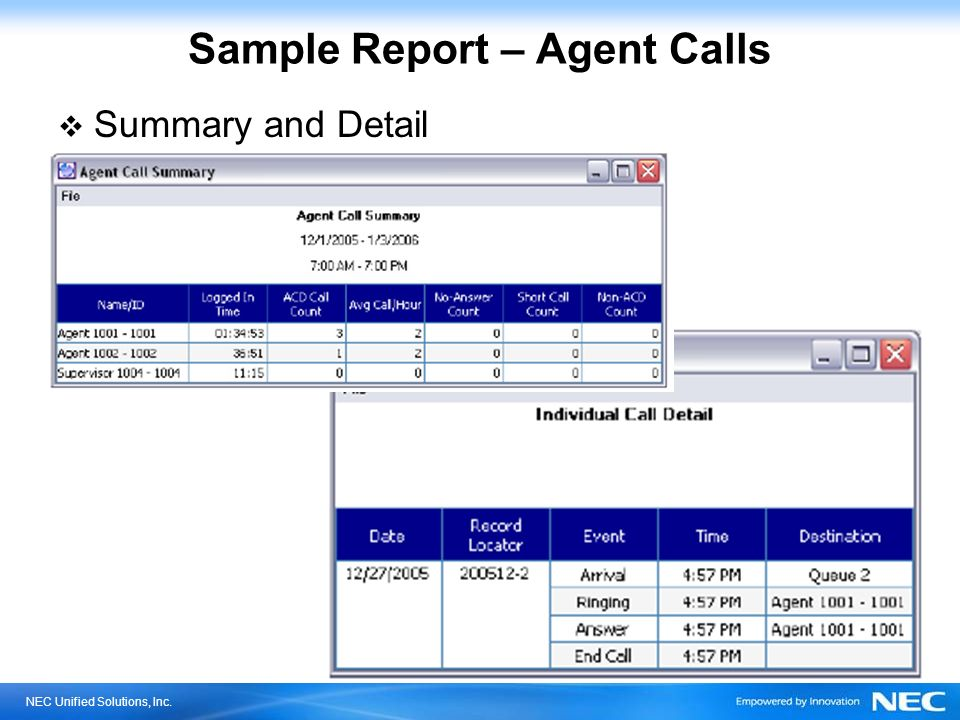 Sample Report – Agent Calls