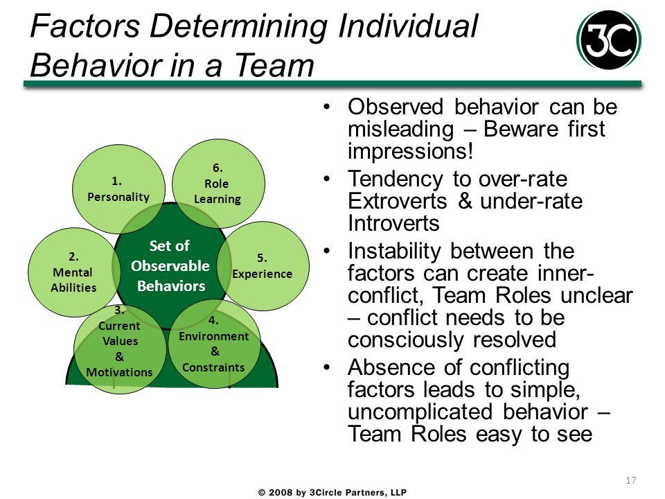 Factors Determining Individual Behavior in a Team