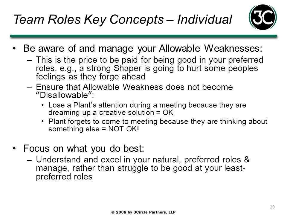 Team Roles Key Concepts – Individual