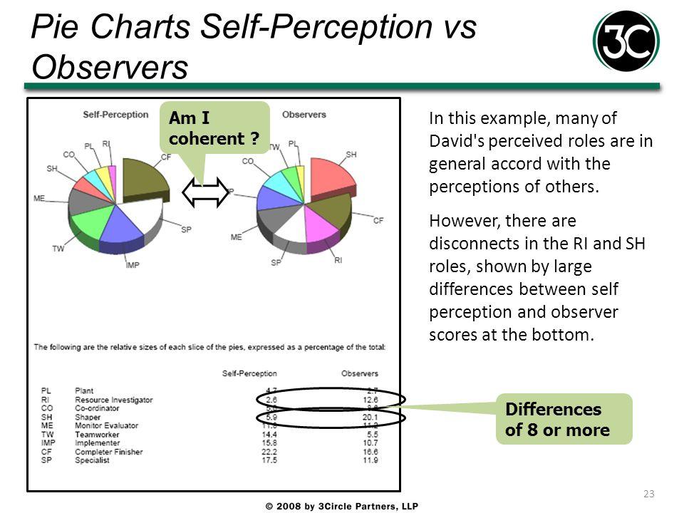 Pie Charts Self-Perception vs Observers