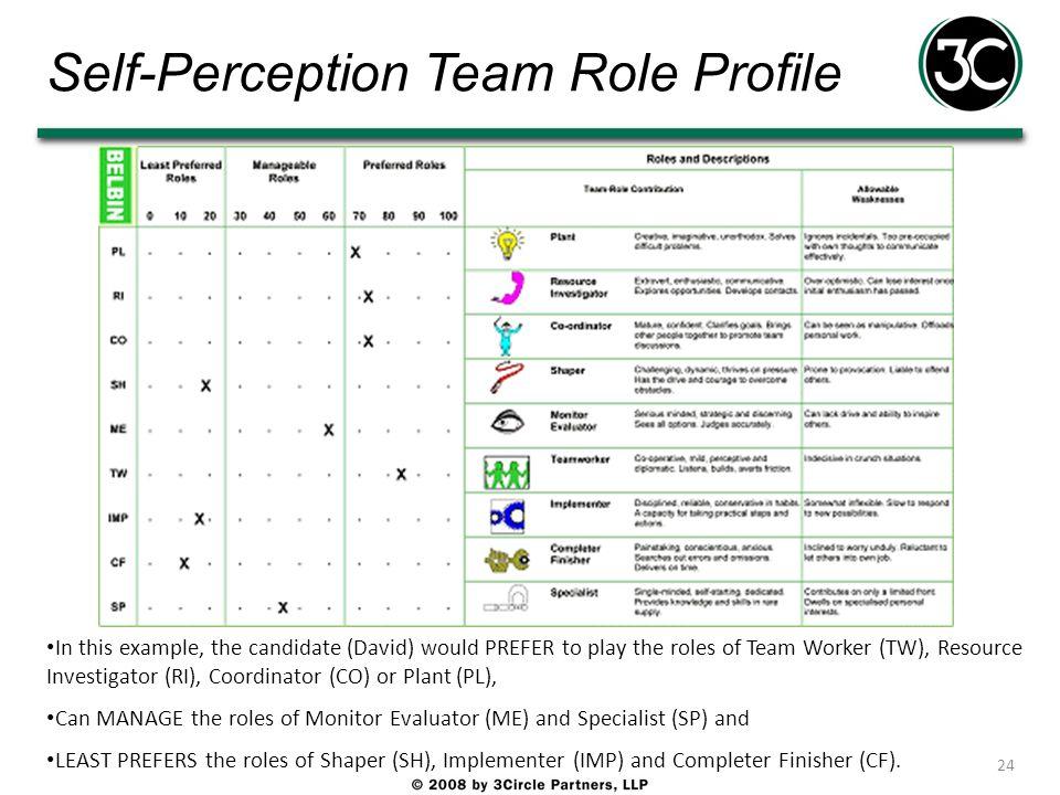 Self-Perception Team Role Profile