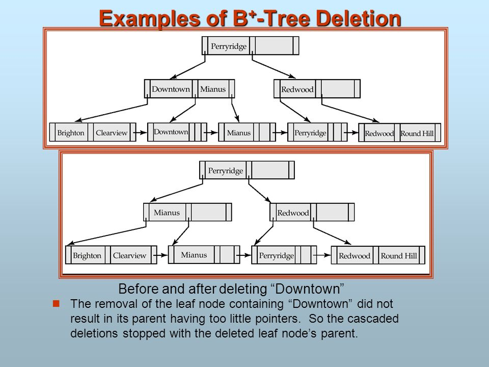 Examples of B+-Tree Deletion
