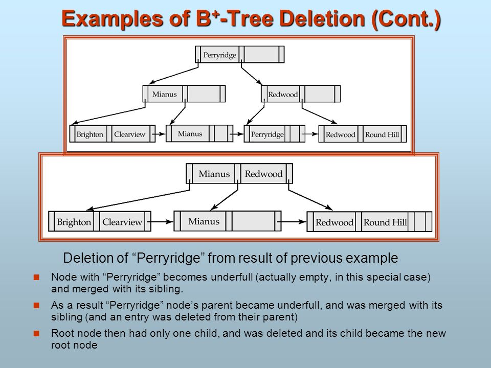 Examples of B+-Tree Deletion (Cont.)