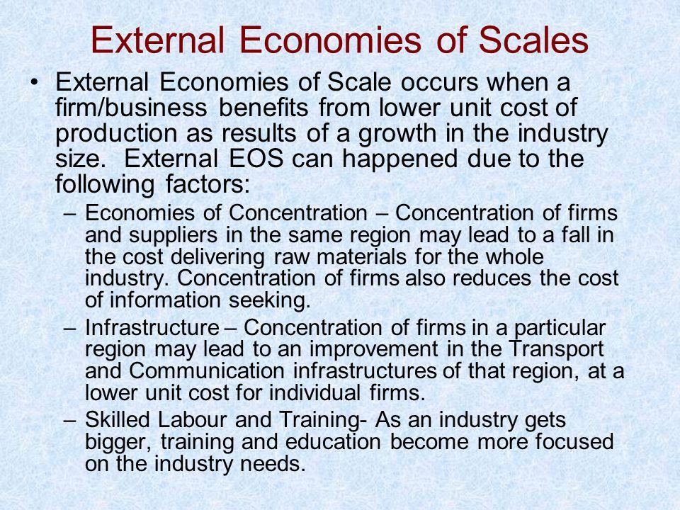External Economies of Scales