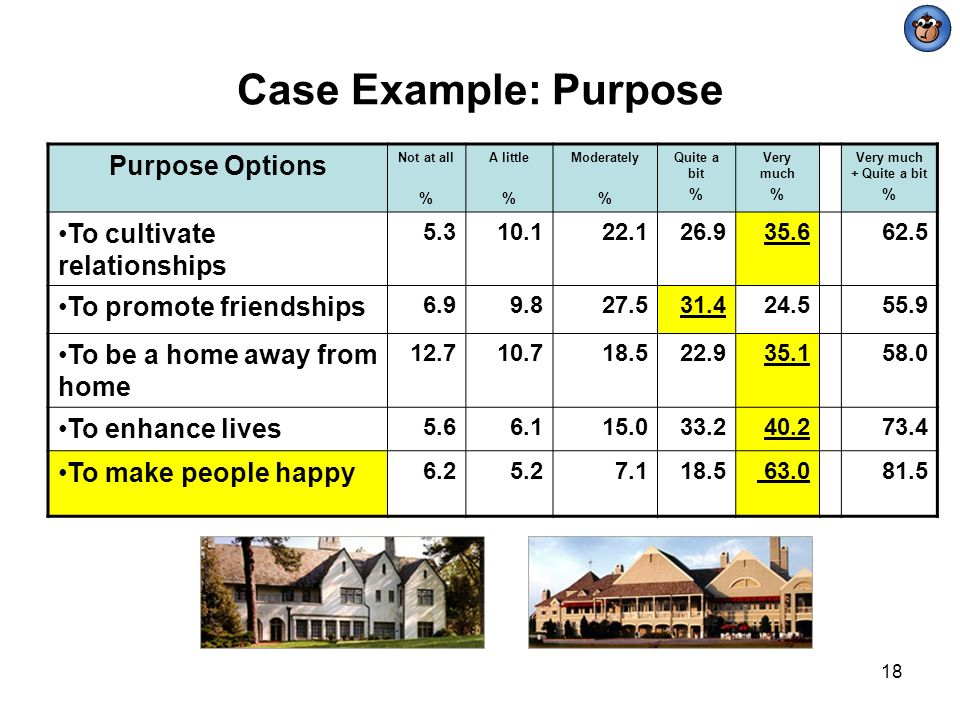 Case Example: Purpose Purpose Options To cultivate relationships