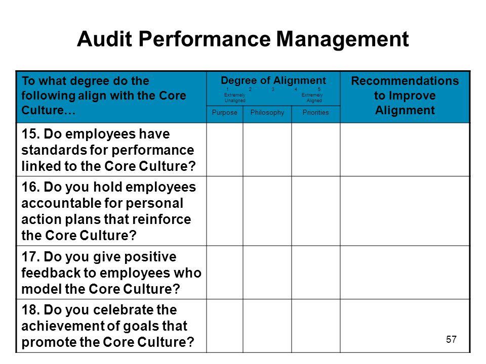 Audit Performance Management