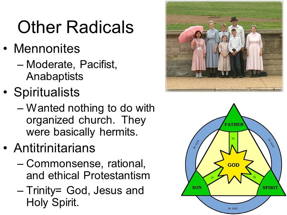 Other Radicals Mennonites Spiritualists Antitrinitarians