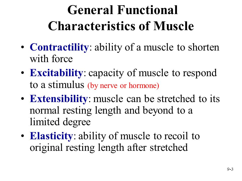 General Functional Characteristics of Muscle