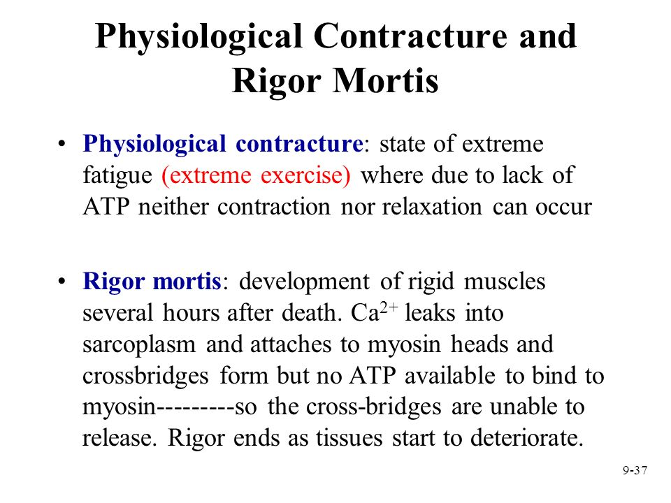 Physiological Contracture and Rigor Mortis
