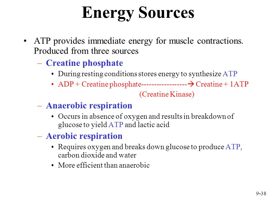 Energy Sources ATP provides immediate energy for muscle contractions. Produced from three sources. Creatine phosphate.
