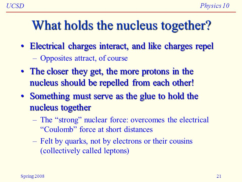 What holds the nucleus together