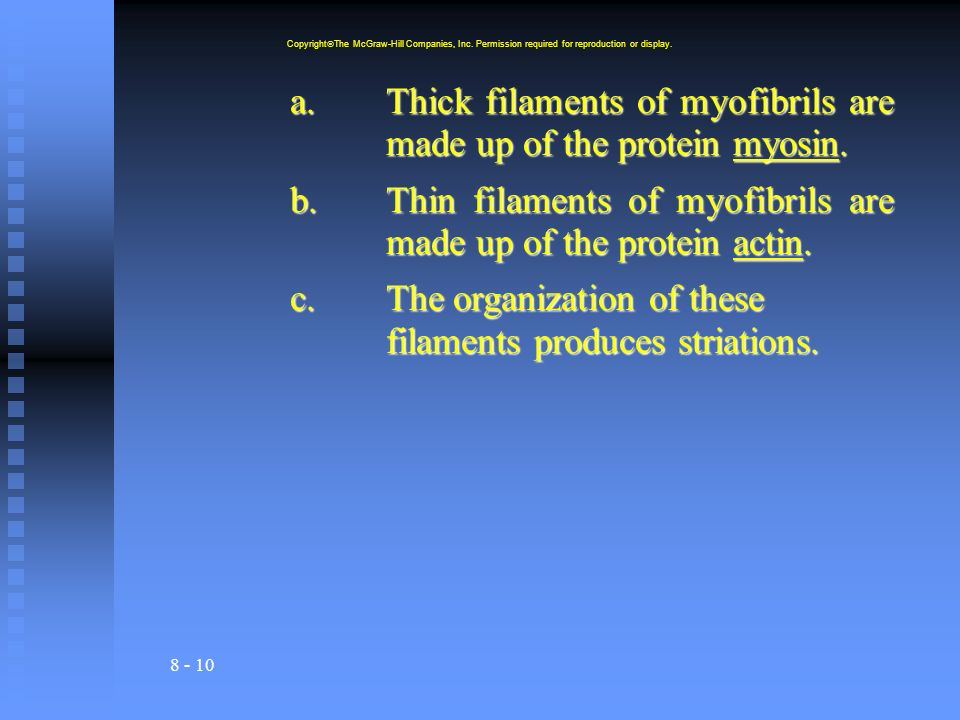 a. Thick filaments of myofibrils are made up of the protein myosin.