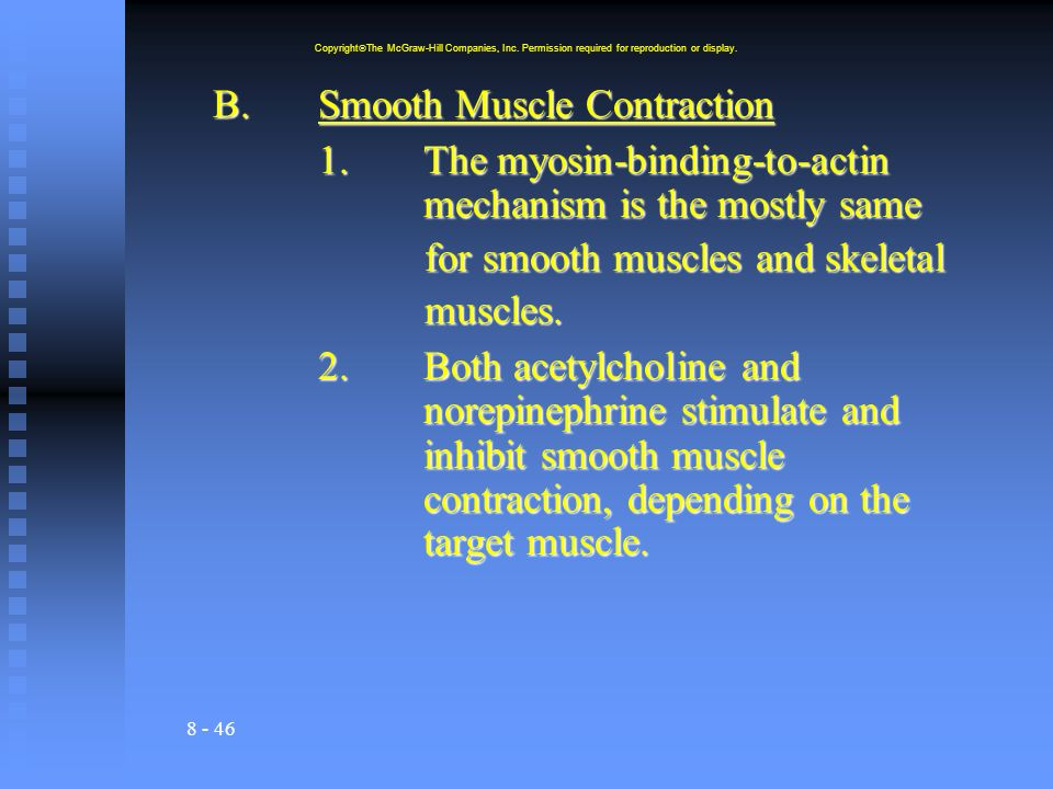 B. Smooth Muscle Contraction