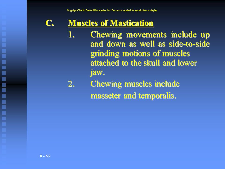 C. Muscles of Mastication
