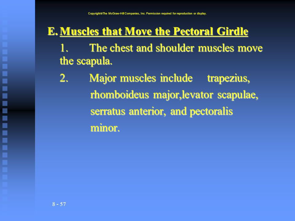 E. Muscles that Move the Pectoral Girdle