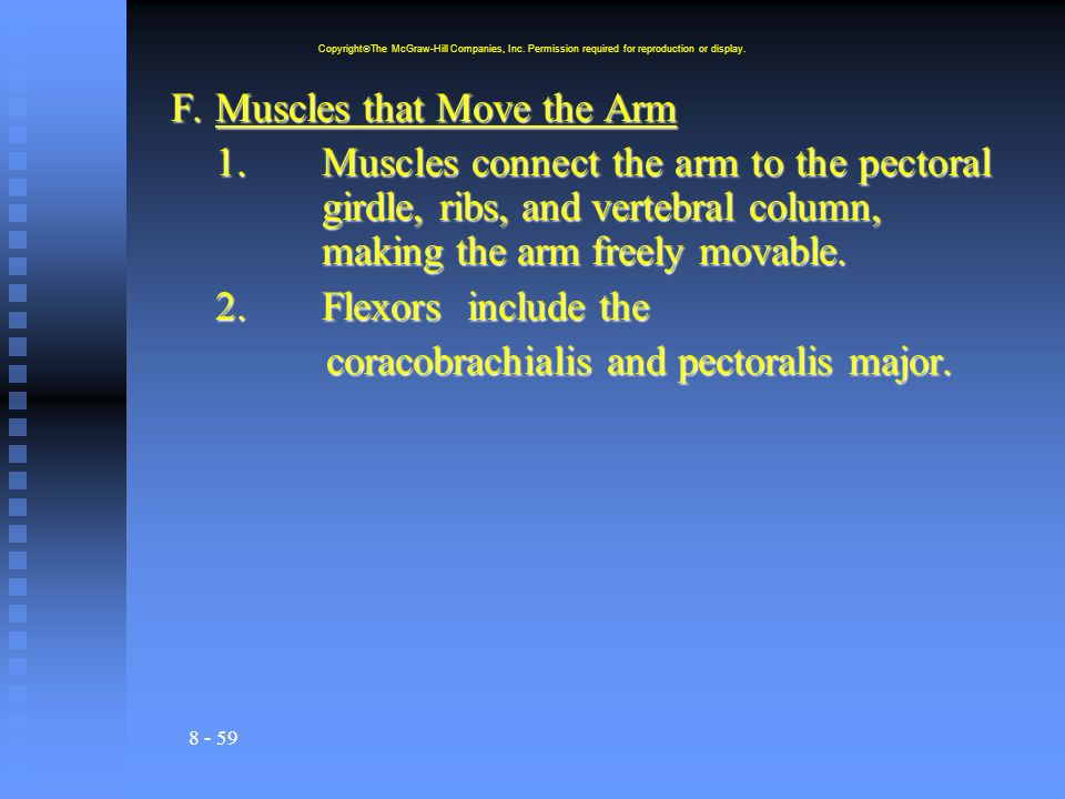 F. Muscles that Move the Arm
