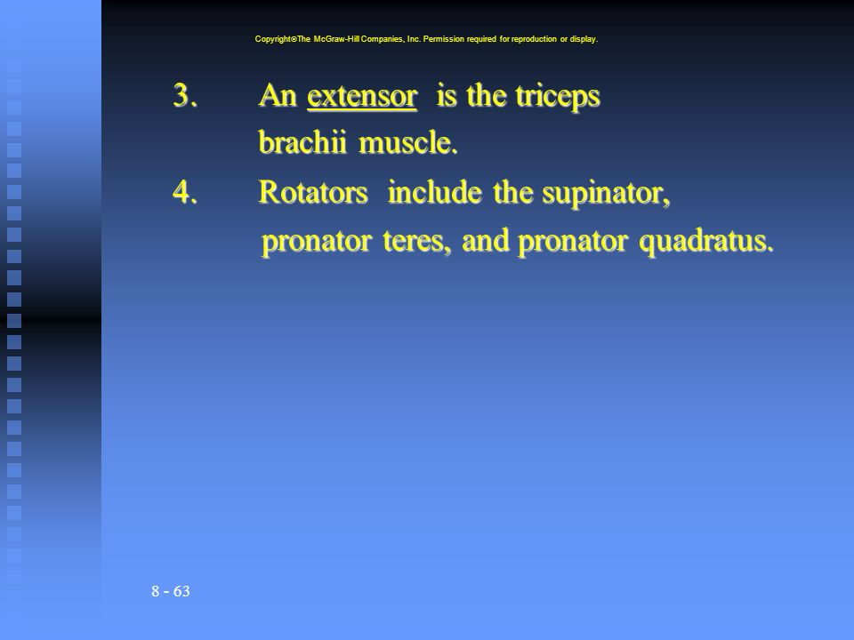3. An extensor is the triceps