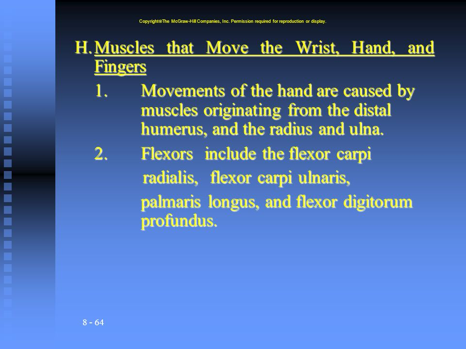 H. Muscles that Move the Wrist, Hand, and Fingers