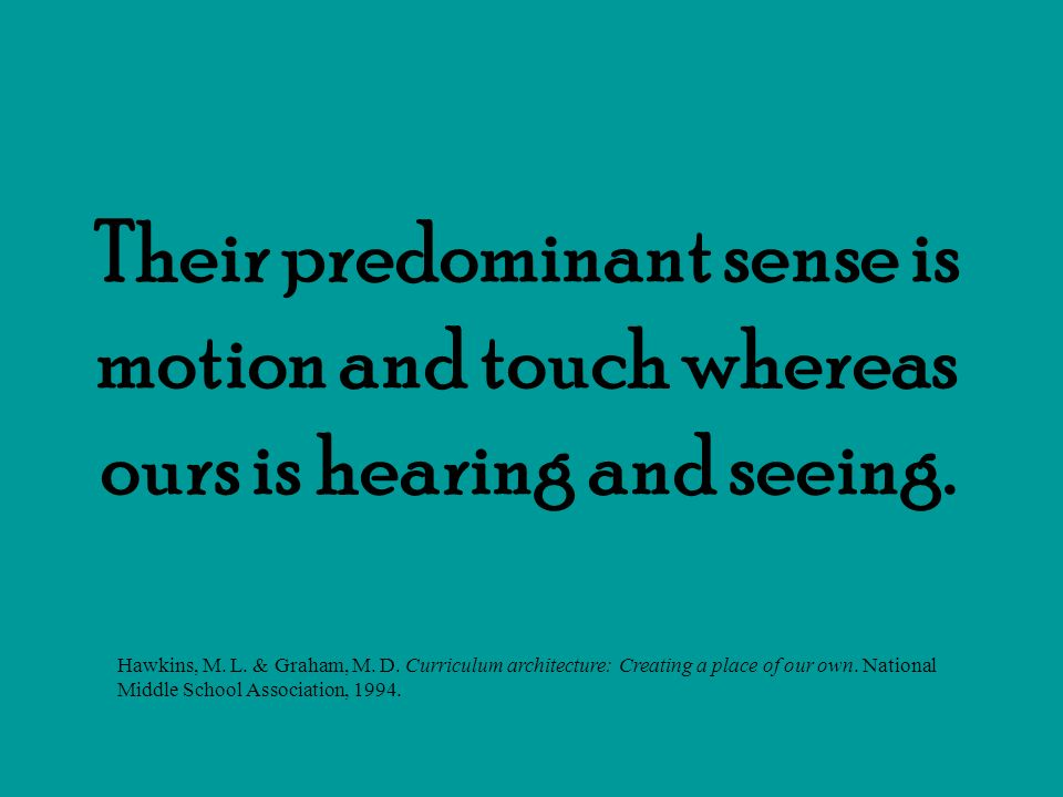 Their predominant sense is motion and touch whereas ours is hearing and seeing.