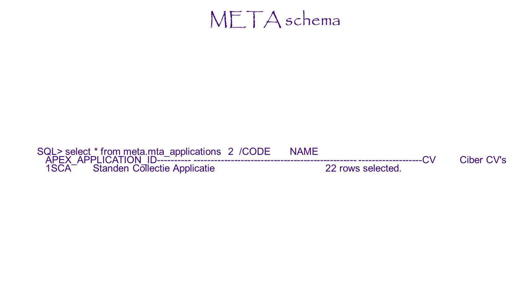 META schema