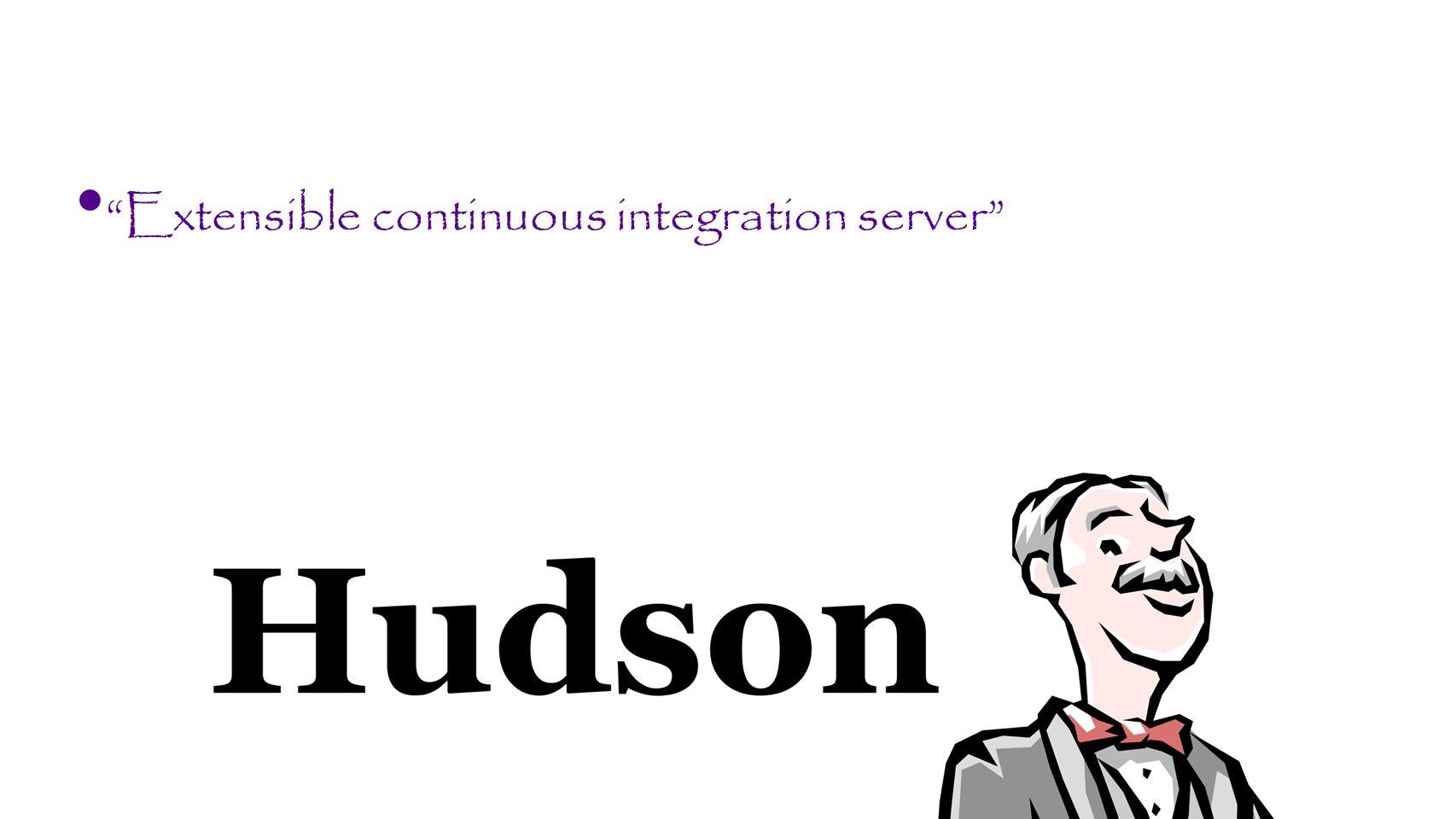 Extensible continuous integration server