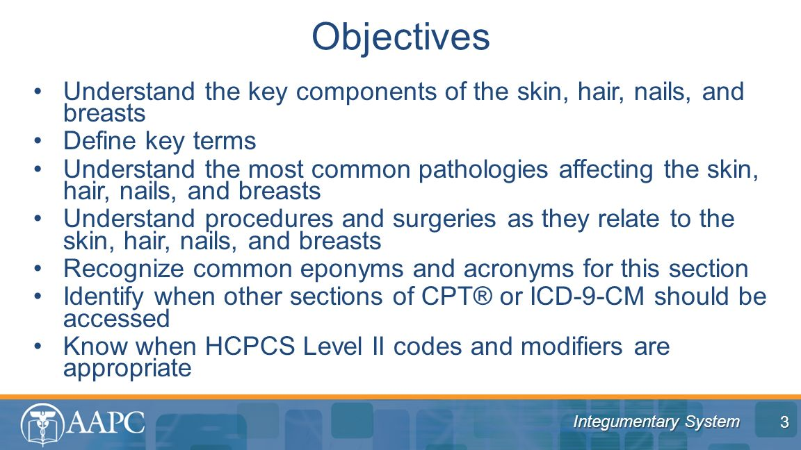 Objectives Understand the key components of the skin, hair, nails, and breasts. Define key terms.