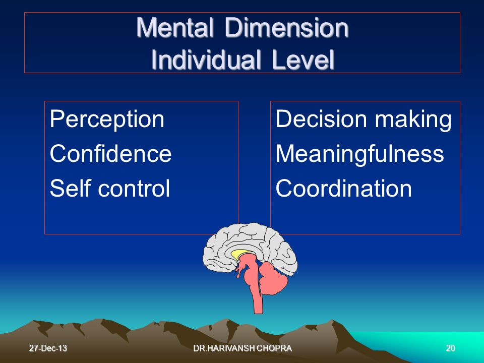 Mental Dimension Individual Level