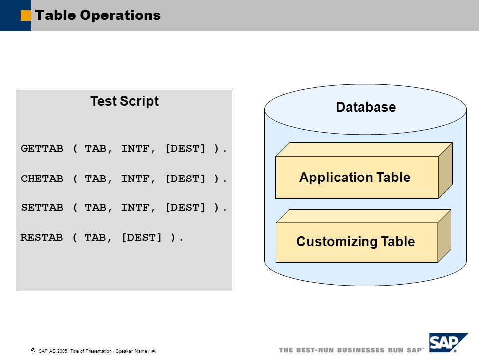 Test Script Database Application Table Customizing Table