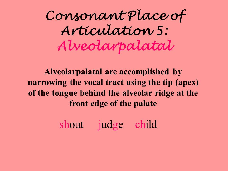 Consonant Place of Articulation 5: Alveolarpalatal