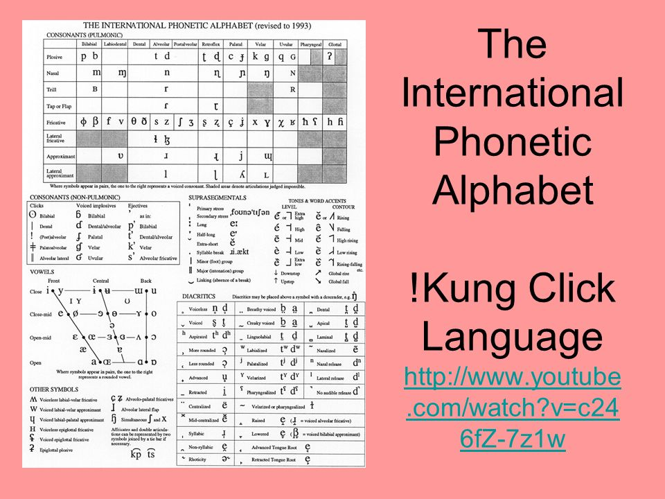 The International Phonetic Alphabet. Kung Click Language