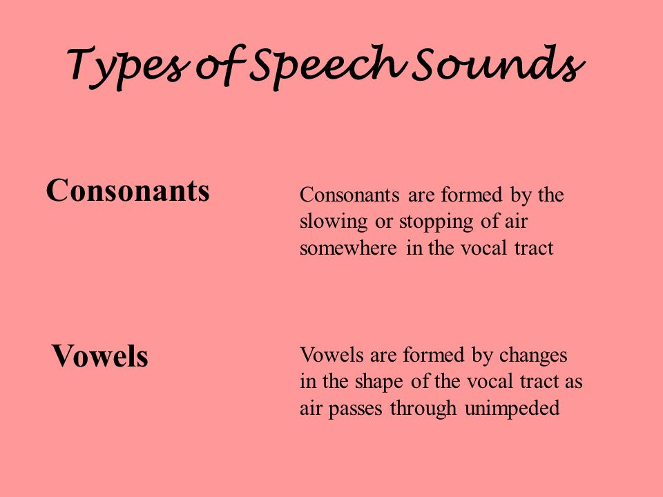 Types of Speech Sounds Consonants Vowels