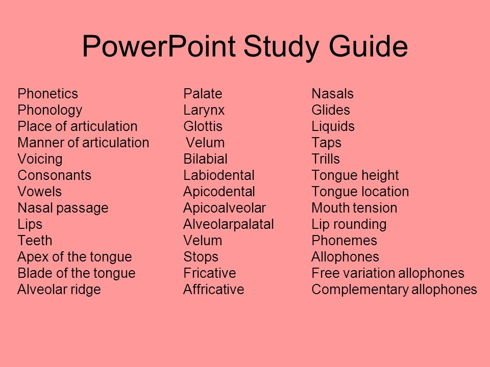 PowerPoint Study Guide