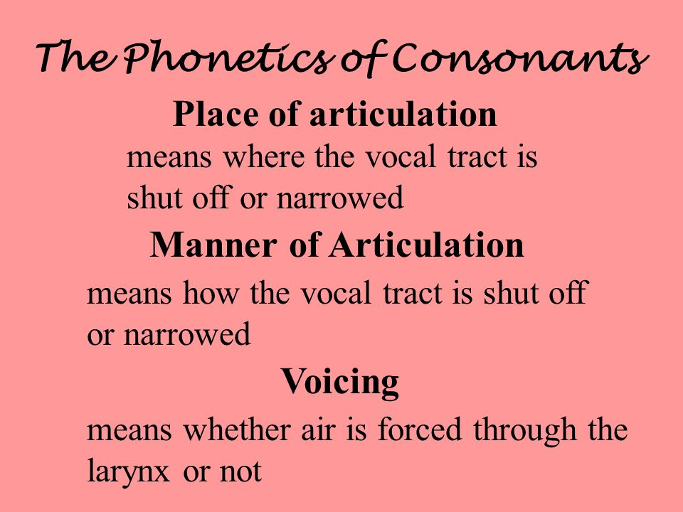 The Phonetics of Consonants