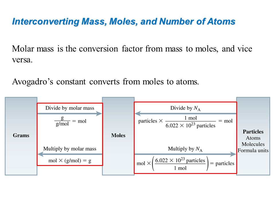 Interconverting Mass, Moles, and Number of Atoms