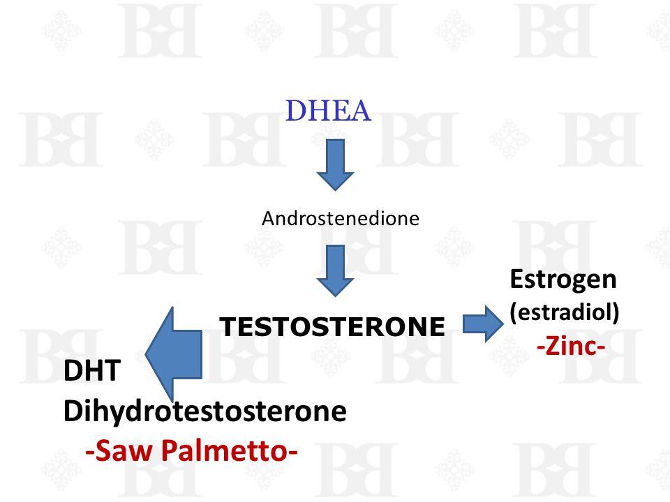 DHT Dihydrotestosterone -Saw Palmetto- DHEA Estrogen -Zinc-