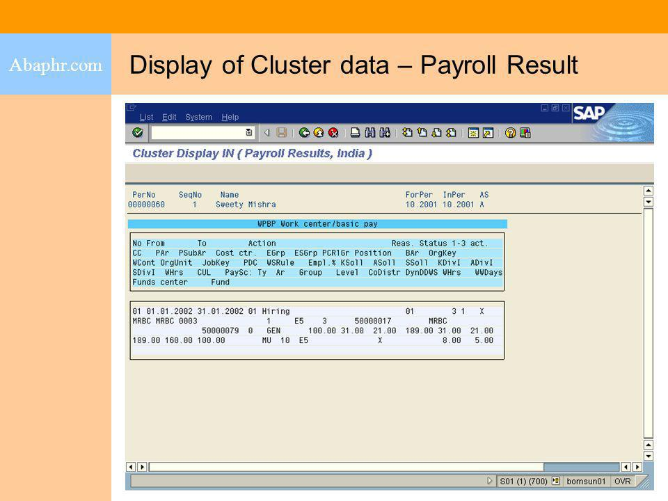 Display of Cluster data – Payroll Result
