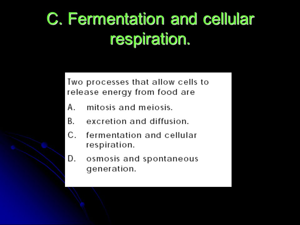 C. Fermentation and cellular respiration.