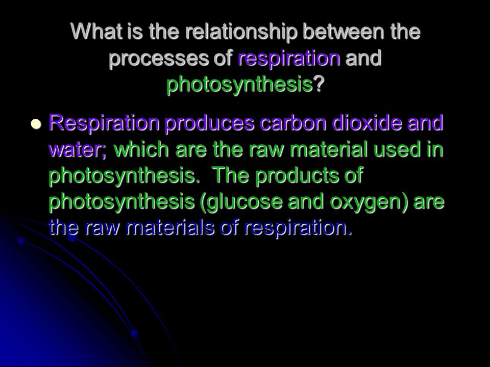 What is the relationship between the processes of respiration and photosynthesis