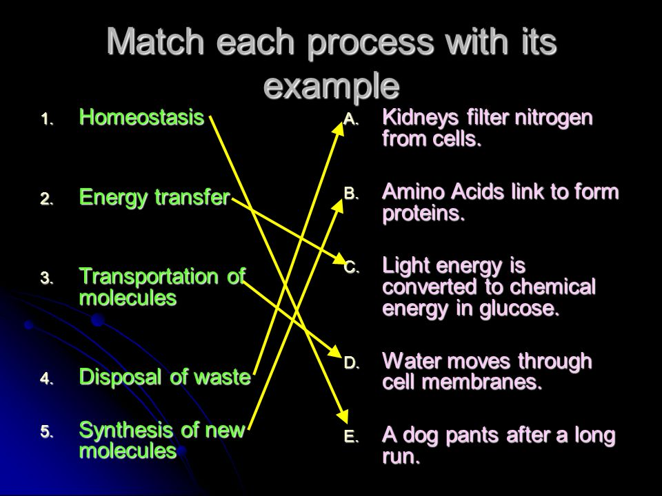 Match each process with its example