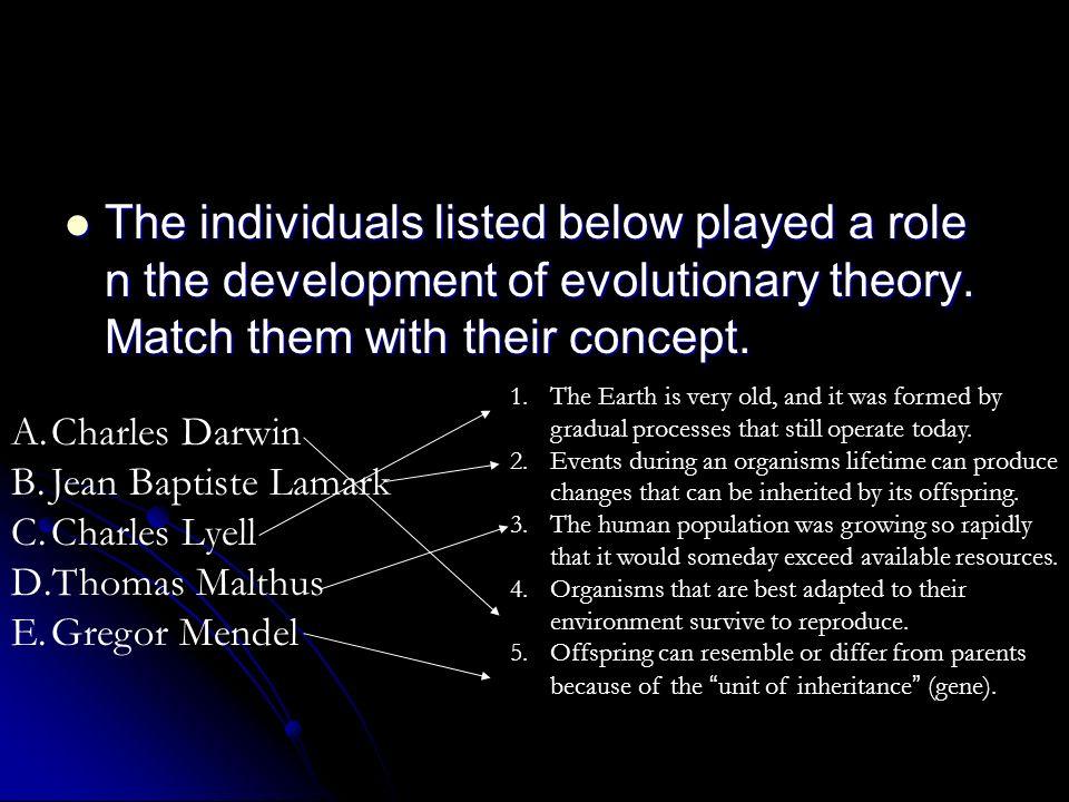 The individuals listed below played a role n the development of evolutionary theory. Match them with their concept.