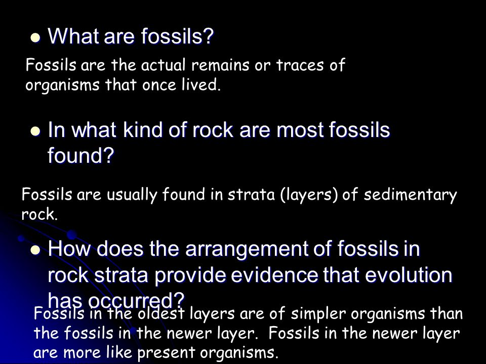 In what kind of rock are most fossils found