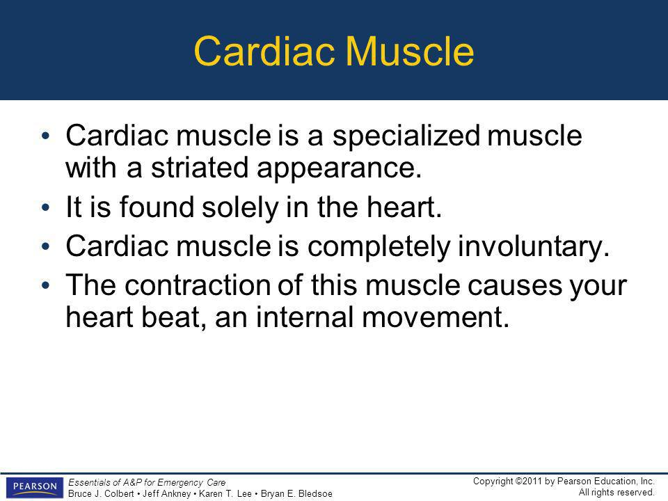 Cardiac Muscle Cardiac muscle is a specialized muscle with a striated appearance. It is found solely in the heart.