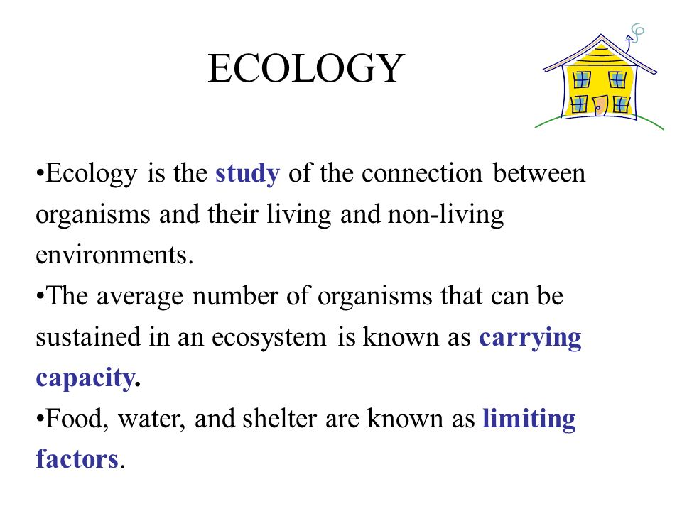 ECOLOGY Ecology is the study of the connection between organisms and their living and non-living environments.