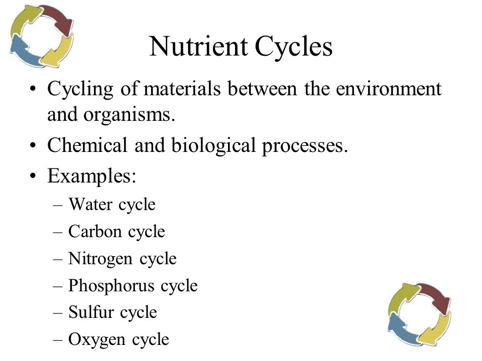 Nutrient Cycles Cycling of materials between the environment and organisms. Chemical and biological processes.
