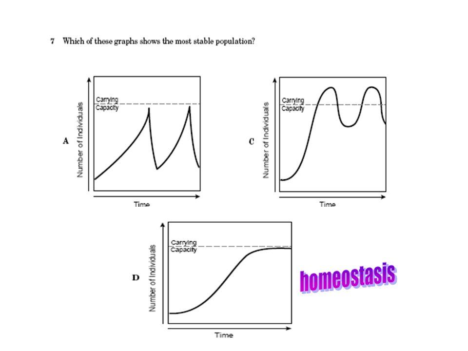 Which of these graphs shows a stable population