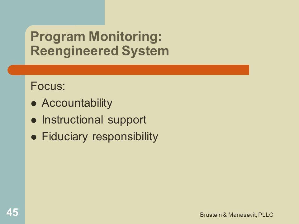 Program Monitoring: Reengineered System