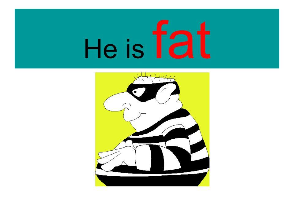 He is fat