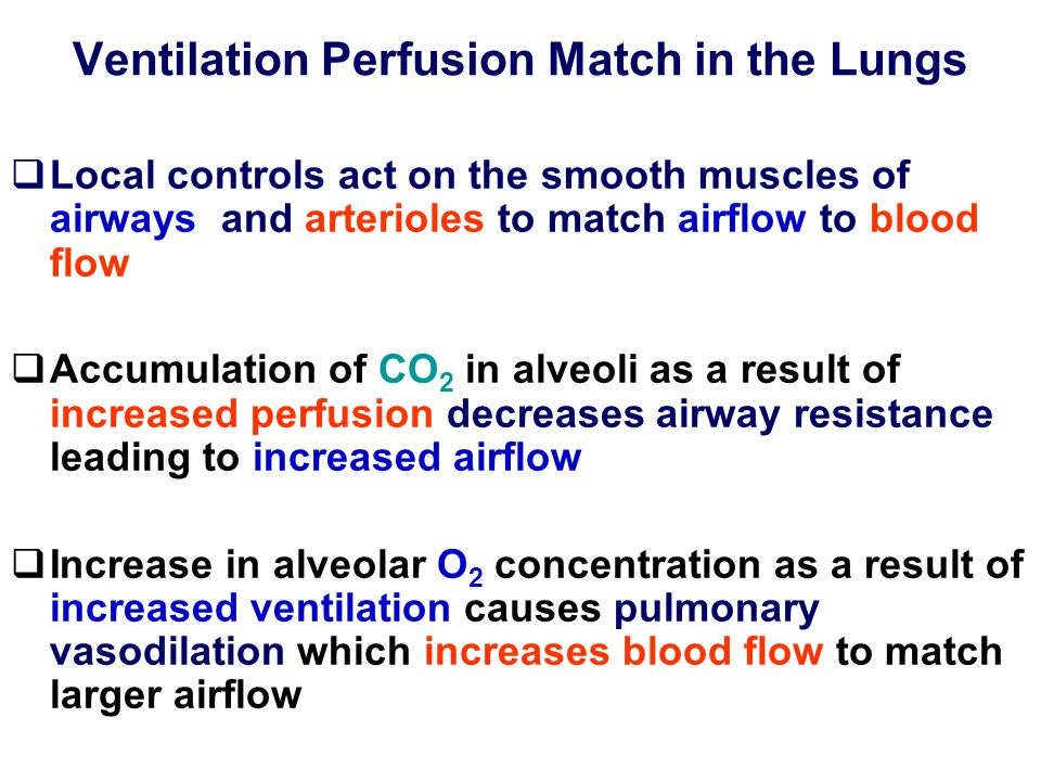 Ventilation Perfusion Match in the Lungs