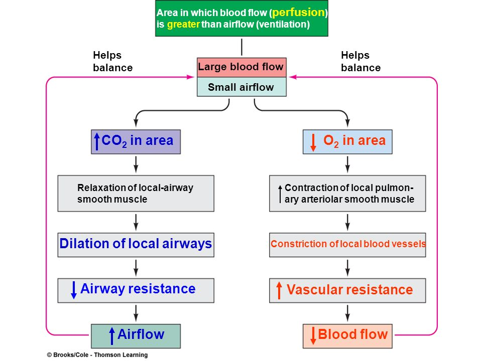 Dilation of local airways